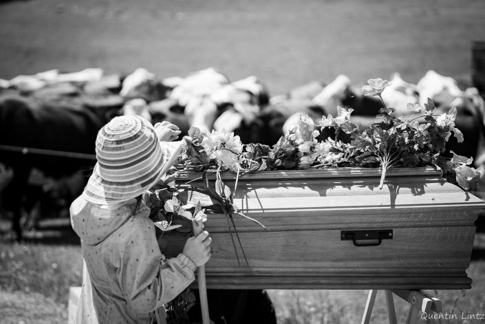 depose de fleurs sur cercueil 4